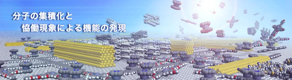 分子の集積化と協働現象による機能の発現